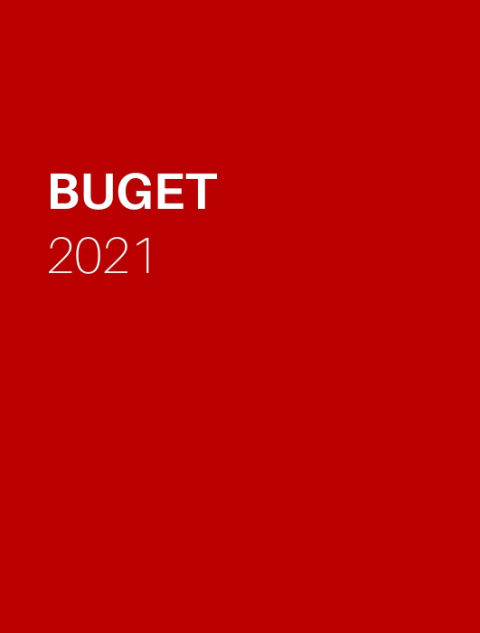 BUGETUL PE ANUL 2021